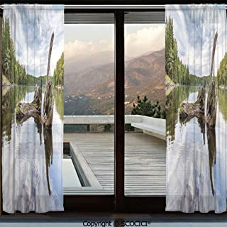 Symmetric Shutters Decorative Sheer Curtains for Kitchen Window Drapes with Rod Pocket for Small Windows,2 Panels,Driftwood Decor,Remains of a White Cedar Tree Trunk in Lake and the Sky Image,Green G