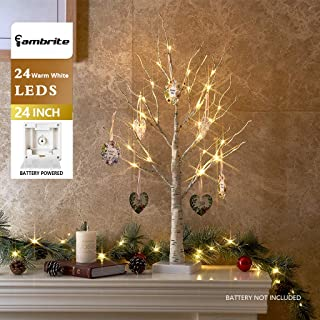 EAMBRITE 2FT 24LT White Birch Twig Tree Warm White Light Tabletop Gift Cards Tree Decorative Home Easter Wedding Party