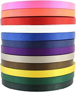Nylon Webbing (1 inch) - SGT KNOTS - Nylon Strap - All Purpose Flat Rope - Heavy Duty Webbing - Crafting, Gardening, Cargo Straps, Tie-Down, Fishing Lines, Marine, More (5 Yards - Florescent Pink)