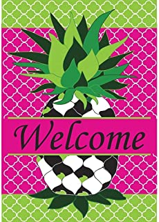 Raininc's Whimsy Quatrefoil Pineapple Friendship 18 x 13 Rectangular Double Applique Small Garden Flag