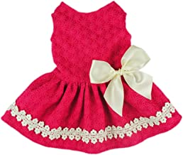 Fitwarm Pink Sweet Pet Dog Dress Lace Ribbon Clothes Shirts
