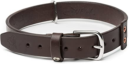 saddleback dog collar