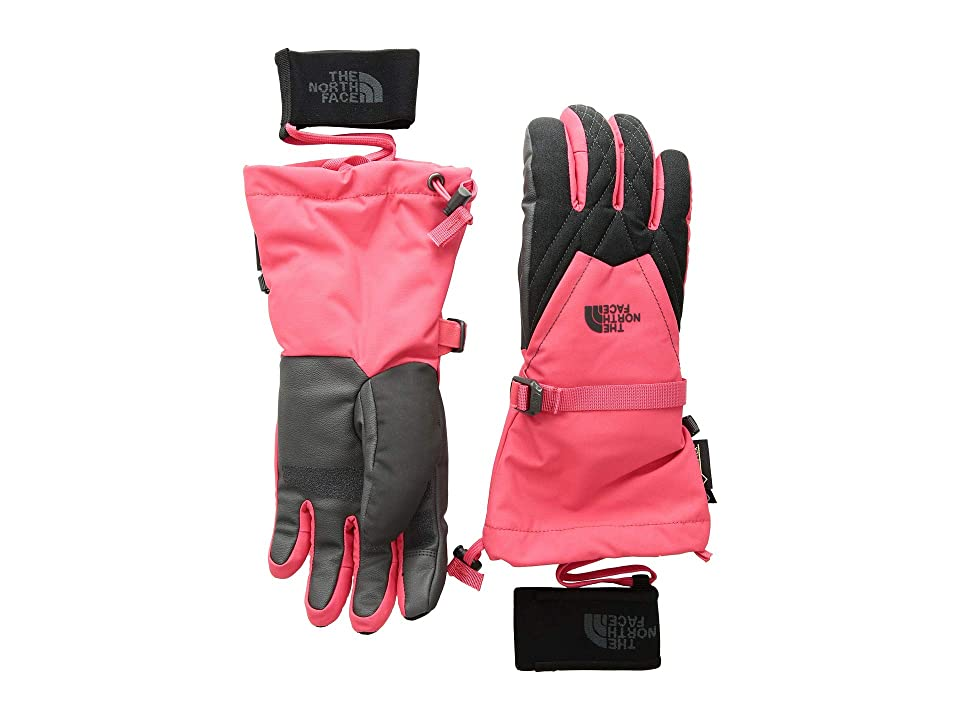 The North Face Montana Gore-Tex(r) Gloves (Teaberry Pink/TNF Dark Grey Heather) Gore-Tex Gloves