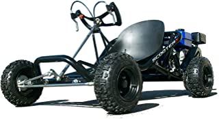 Best sport kart 6.5hp off road go kart Reviews