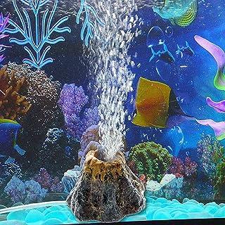 Amazon.es: piedras acuario