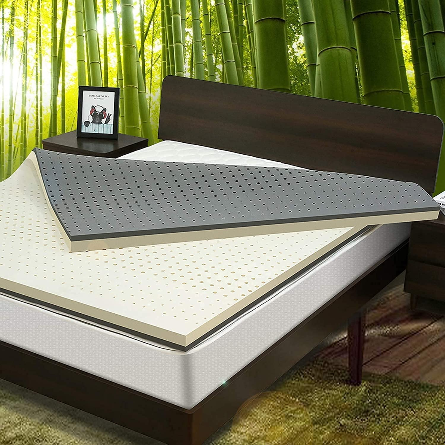 NESAILA price 3.15 Inch Natural Latex All stores are sold Topper Queen Dual Size- Mattress