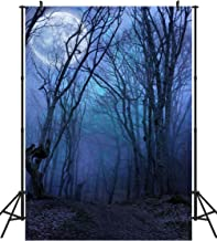 dark forest background with moon