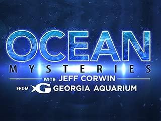 Ocean Mysteries - Season 1