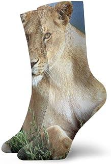 Pengyong, Pengyong - Calcetines deportivos para hombre y mujer, diseño de león