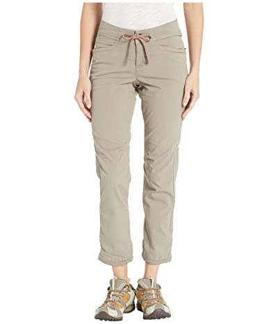 The North Face North Dome Pants (Silt Grey) Women