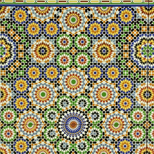 Casa Moro marokkanische Keramikfliesen Temara 50x25 cm 1 qm bunt Mosaik-Muster | orientalische Wandfliesen Vintage Mosaik-Fliese | Schöne Dekoration für Bad Küche Flur & Küchenrückwand | FL50588A