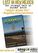 "LOST IN NEW MEXICO ""Recommended"" - Library Journal (includes non-commercial PPR & DSL)"