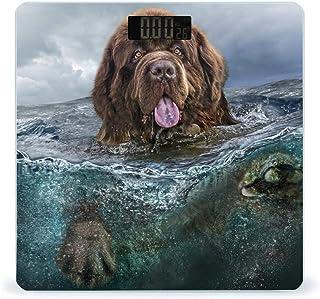 Balanza digital de peso inteligente con pantalla LCD para perros subacuáticos de Newfoundland