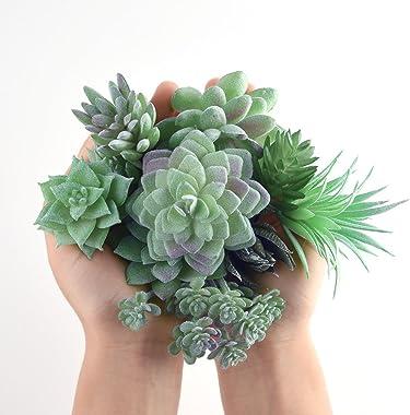 FEPITO 15 Pcs Artificielles Plantes Succulentes Vert sans Empotage Faux Fleur Succulentes Mini Echeveria Pics Tiges en Vrac p