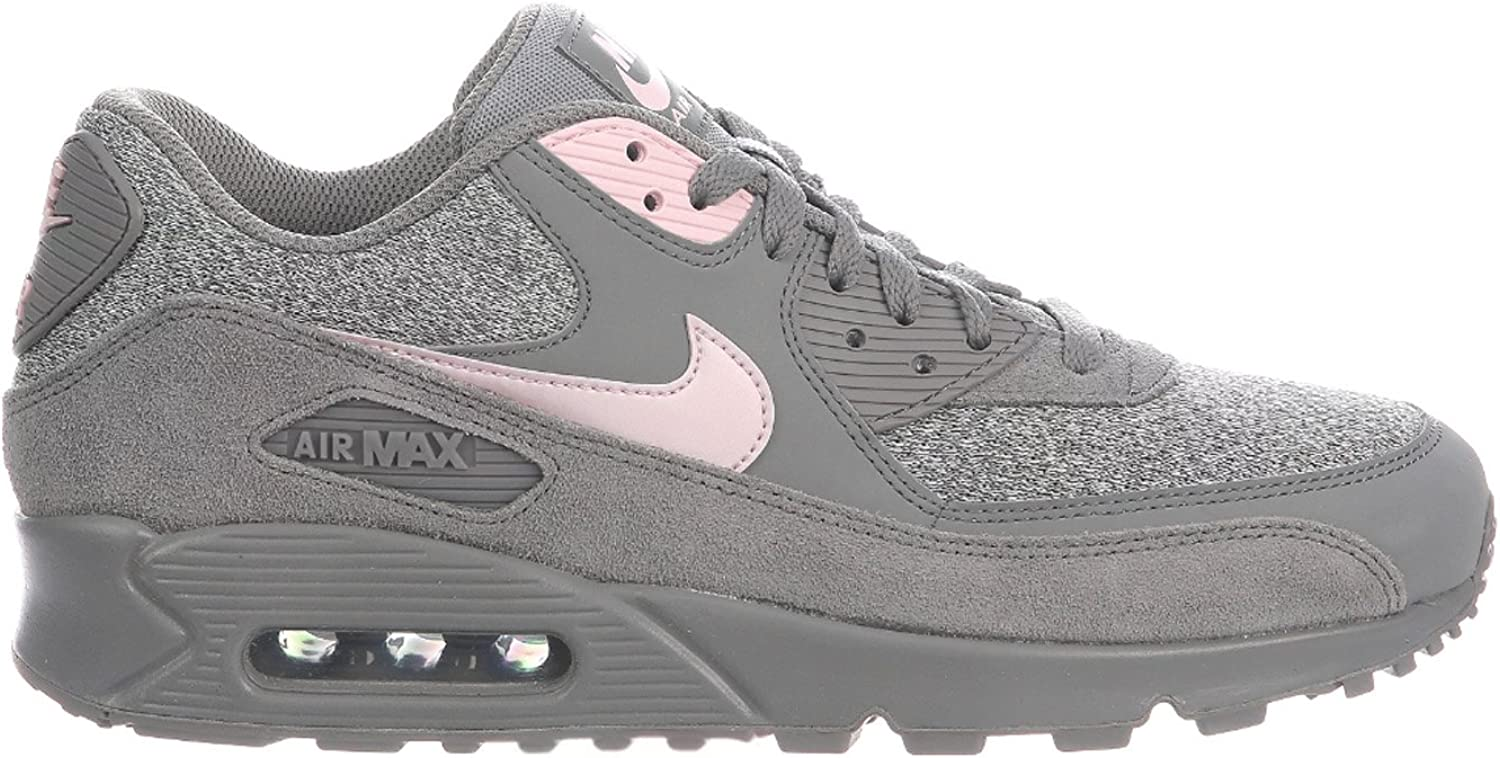 Nike Men's Air Max 90 Dust Arctic Pink Sail Leather Casual shoes 11 D(M) US