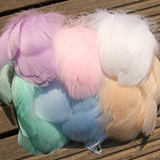 GCOA Lot de 700 plumes colorées de 8 à 12 cm pour loisirs créatifs, mariage, anniversaire, décoration de fête (7 couleurs)