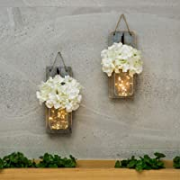 HABOM Mason Jar Sconce Wall Art Home Decor
