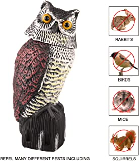 Best owls to scare away birds Reviews