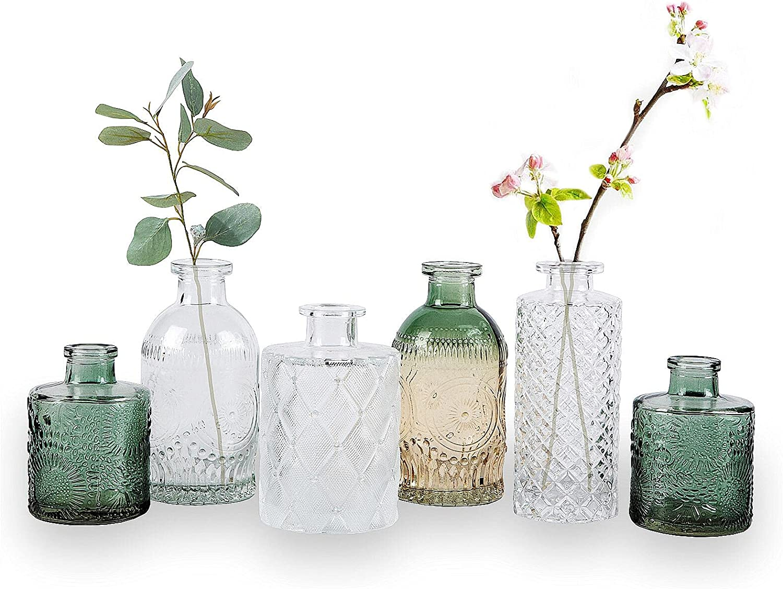 Award-winning store WILDMOS Glass Bud Vase Set of Regular store Small 6 for Flower Decorati Vases