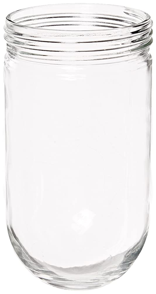 RAB Lighting GL200 200 Series Vaporproof Threaded Glass Globe, 300W Power, Individually Boxed, Clear