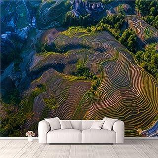 Modern 3D PVC Design Removable Wallpaper for Bedroom Living Room Longji Terraced Fields in LongshengGuilinChina Wallpaper ...