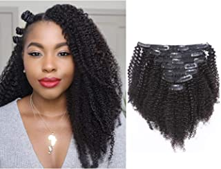 Afro Kinky Curly Clip in Human Remy Hair Extensions Brazilian Curly Clips Hair Extensions 4B 4C 8A Virgin Thick Natural Black Color Clip on For Black Women 10-22 inch (14 inch, AC #1B)