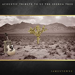 Acoustic Tribute to U2 the Joshua Tree