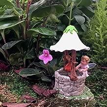 Flower Fairies Secret Garden - Baby Apple Blossom Fairy & Accessories…