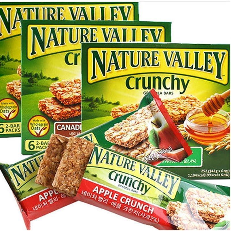 広まった部分的にプランテーション[ネイチャーバレー/Nature Valley] OATS&HONEY SYRUP/ネイチャーバレークランチグラノーラバー42g5パックx3 Box - 大津?アンド?ハニーシロップ(合計15袋)穀物バー/シリアル/栄養のバー[健康&ダイエット製品](海外直送品)