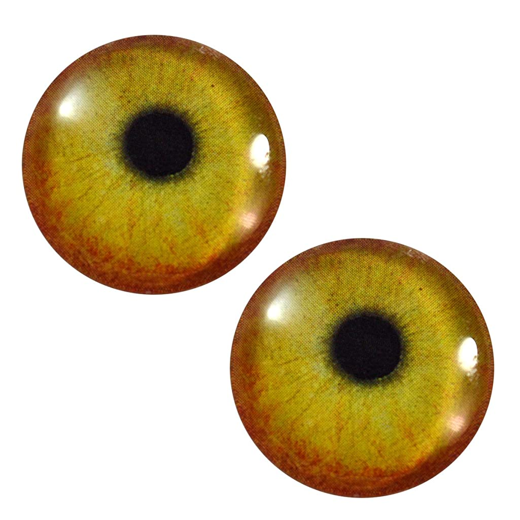 30mm Yellow and Orange Flamingo Bird Glass Eyes Realistic Pair for Art Dolls, Sculptures, Props, Masks, Fursuits, Jewelry Making, Taxidermy, and More