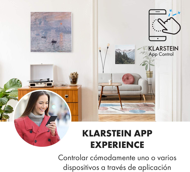 WiFi Calefactor infrarrojo Almendro en Flor Control por App 350W KLARSTEIN Wonderwall Air Art Smart 7 m/² Panel Calefactor el/éctrico silencioso 60 x 60cm para Colgar en la Pared