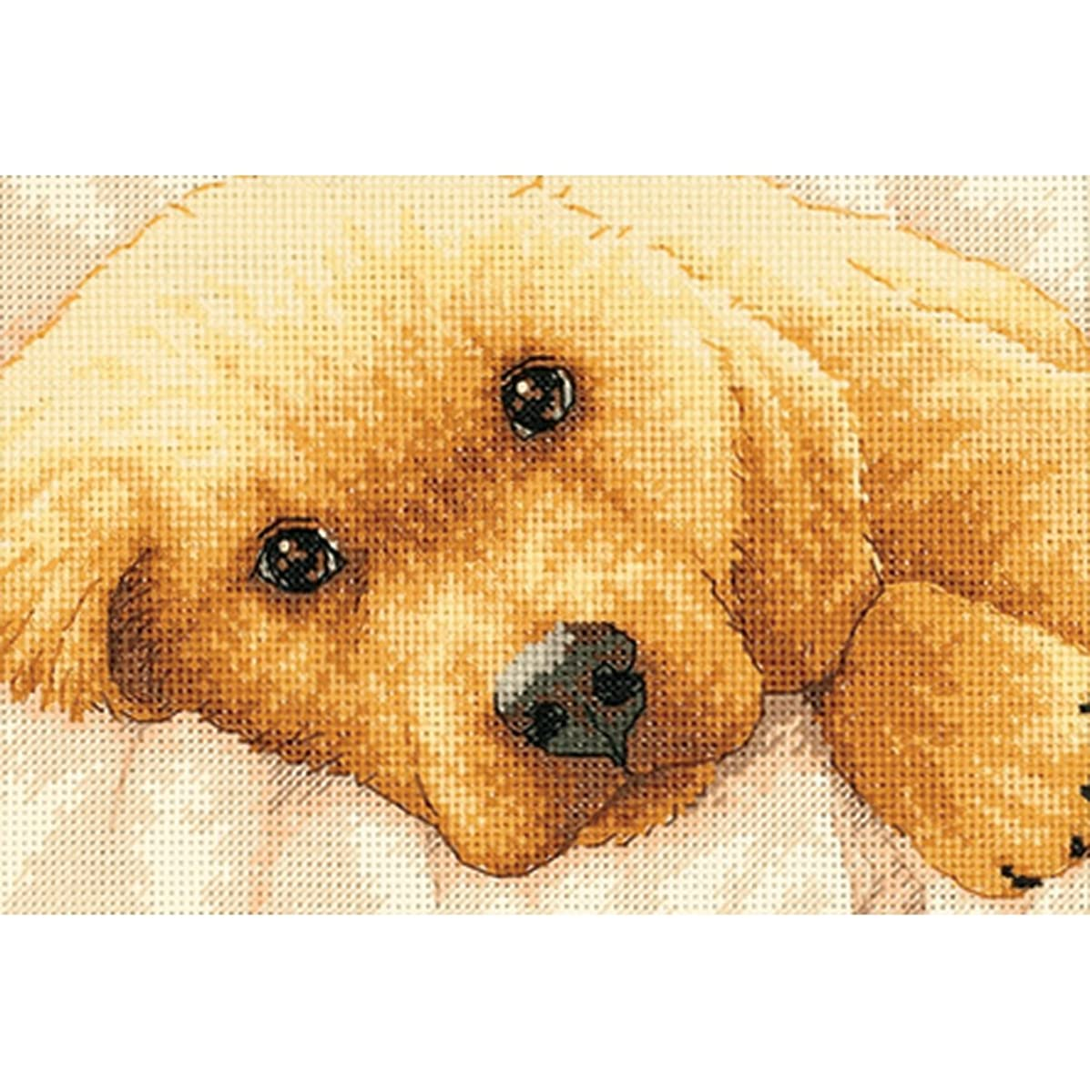 Dimensions Needlecrafts Counted Cross Stitch, Golden Puppy