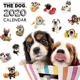 The Dog Wall Calendar 2020 All-Star