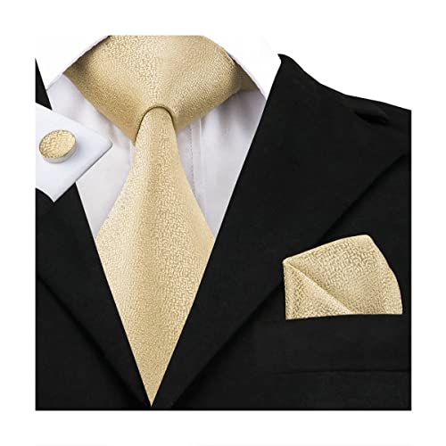 dea217d914a6 Hi-Tie Classic Gold Champagne Tie Pocket Square and Cufflinks Gift Box set  Woven Silk