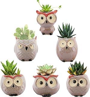 Lewondr Ceramics Flowerpots, 6 Pack 2.5 inch Owl Flower Pot Bonsai Plant Pots Succulents Planter Container Set for Home Of...