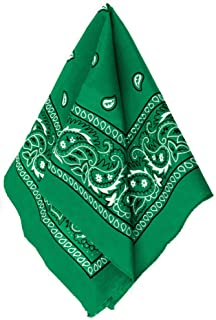 Amscan Bandana, Party Accessory, Green