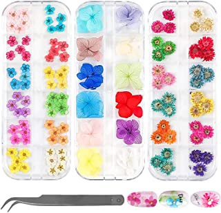LIMGLIM 132pcs Nail Dried Flowers 3D Nail Stickers Supplies 3 Boxes 36 Colors Mini Natural for Nail Art Supplies Decals Mixed Accessories, Starry Flower