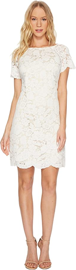 Lace Shift Dress with Scallop Details At Hem