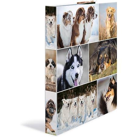 HERMA Classeurs á 4 anneaux A4 Animaux motif chiens, dos de 35 mm, Classeur en carton rigide, Avec compresseur