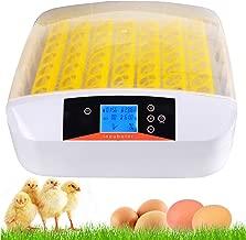 incubadora para huevos de gallina