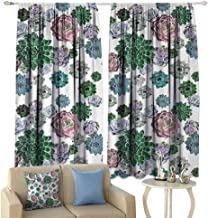 HoBeauty Cactus, Blackout Window Curtain, Colorful Pattern of Succulent Plants Tropical Exotic Foliage Natural Garden Design, Customized Curtains,(W63 x L63 Inch, Multicolor