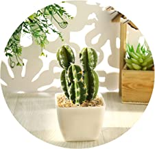 One Set Tropical Cactus Artificial Plants Home Garden Party Decoration Accessories Kaktus Bonsai Artificial Succulents Plants,JH739