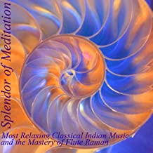 Most Relaxing Classical Indian Music and the Mastery of Flute Raman