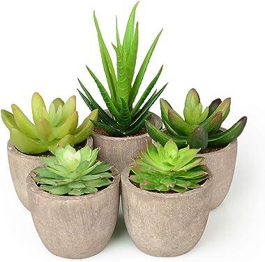 Abree Lot de 5 pots de plantes grises artificielles et faux cactus assortis pour décoration de maison ou de bureau