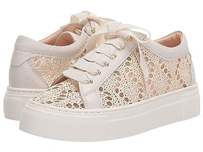AGL Lace Sneaker (Off White) Women