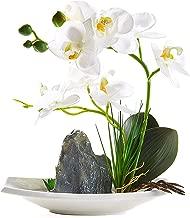 Best piano flower arrangements Reviews