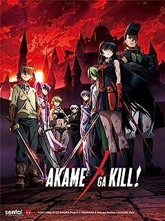 Akame Ga Kill 3D Lenticular Wall Art Poster With Frame
