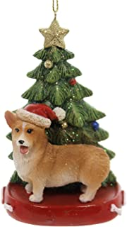 Best Kurt Adler CORGI WITH CHRISTMAS TREE ANE LIGHTS ORNAMENT FOR PERSONALIZATION Review