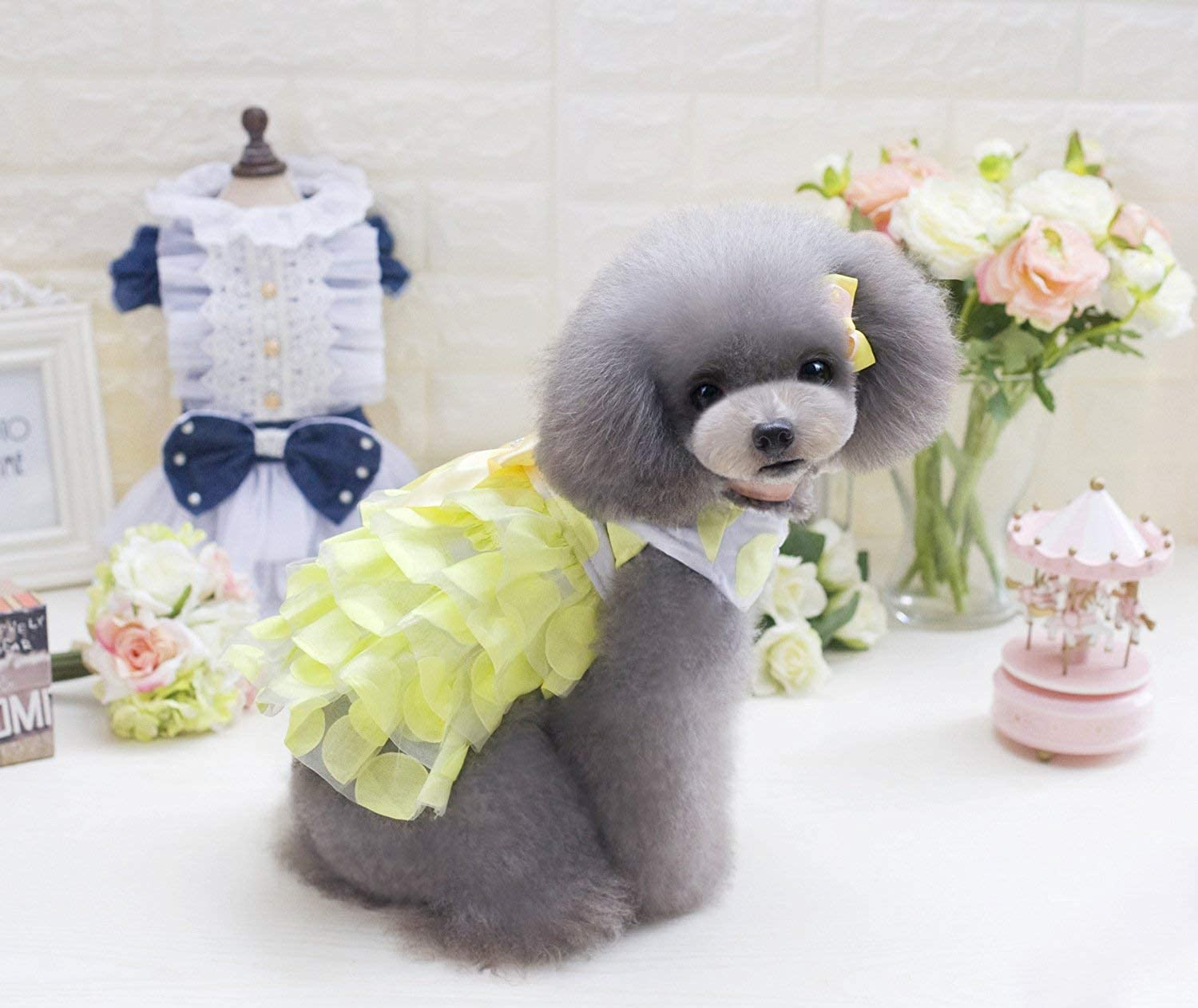 HSDDA Party Pet Costume Spring and summer new pet clothes dog clothes Korean version of the little dot skirt (color   Pink, Size   L) Pet Uniform (color   Yellow, Size   M)
