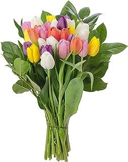 Stargazer Barn Rainbow Bouquet Stems Of Fresh Tulips No Vase, 30 Stems